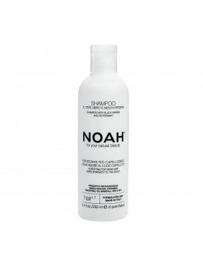 NOAH, 1.7 Plaukus stiprinantis šampūnas silpniems, slenkantiems plaukams, 250 ml